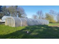 Commercial pollytunnel 18ftx60ft