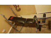 PRO POWER Weight Lifting Excercise Bench