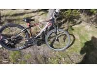 Giant Boys mountain bike