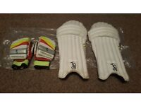 Cricket Pads and matching gloves