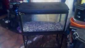 Clear seal 100l full aquarium set up on wrought iron base