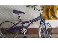 three bike for sale one for 10yrs old one girl bike for 11year one boys big bike