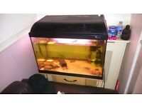 fish tank full set up with stand and fish