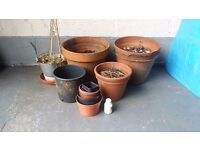 Plant pots and rooting compound