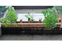 Hand Handcrafted Wooden Planter , Reclaimed Pallet Wood, white strip decor. Fake Grass lining