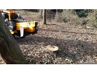 Haverhill Tree Stump Grinding And Tree Root Removal
