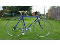 Vintage Wilier racing bike