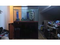"""LARGE TURTLE FISH TANK 36"""" x 22"""" x 11"""" EVERYTHING INCLUDED"""