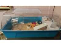 Male hamster and new cage water bottle good pot straw
