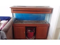 REDUCED- 4ft by 2ft fish tank with wooden surround