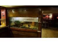 Buy Now Large Fish Tank 1800x710x210mm