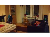 Spacious Double Room *until May, Lovely Flat, Meadowbank nearby City Centre (All bills included)