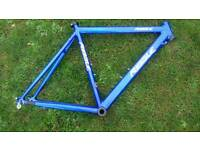 RIBBLE AUDAX frame and carbon forks.