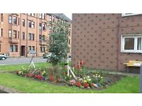LOVELY 1 BED FLAT IN CENTRAL PAISLEY, DSS CLIENTS WELCOME