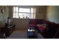 One double room available