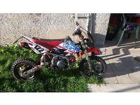 Race YX 140 honda pit bike crf 50 size rapid
