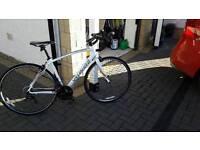 Specialized secteur sport road bike. Excellent condition