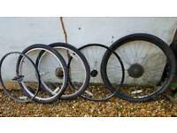 "Mtb wheels 26"""