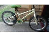 Children's bike age 6/10