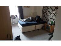 2 bedroom flat West End for the Summer, furnished.