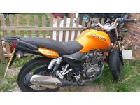 Zontes Panther 125 orange