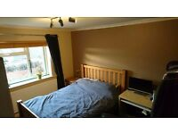 Furnished double room in houseshare, £450 bills included