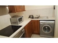 One bedroom flat in quiet house, University Avenue. Suit professional(s)