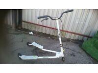 Fliker scooter , large
