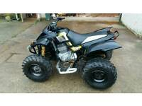 QUADZILLA SMC STINGER 250E ROAD REG