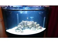 Fish tank aqua one 350 litre fish tank and stand