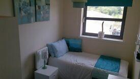 Single Room to share