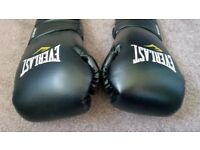 Everlast Protex 2 Training Gloves 14oz. plus Skipping Rope