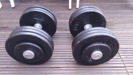 32.5kg dumbbells