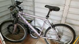 Ladies purple bicycle delivery available