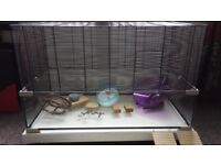 Large pet cage and many extras. With custom built platform (Worth £250+).