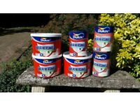 Paint. Dulux weather shield Smooth Masonry gardenia (light cream)