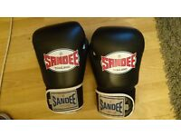 Real Sandee Thai Boxing gloves