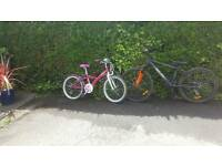 Bargain boys and girls bikes