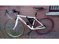 """Road Racing Bike - Felt Dispatch Single Speed 18"""" 46cm Frame Carbon Fork"""