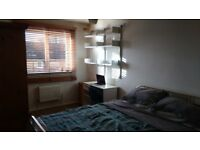 Lovely Sunny Large Double (unfurnished) in SE17