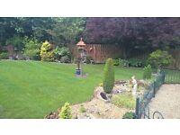 Gardening service in Aberdeenshire
