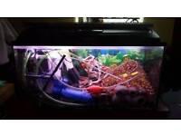 200 l fish tank