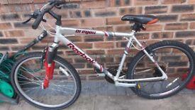Reebox mountain bike for sale