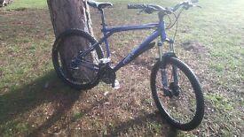 Customised GT aggressor mountain bike