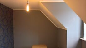 EXPERIENCE PAINTER AND DECORATOR ...FREE QUOTE.. ALL NORFOLK..LUCAS