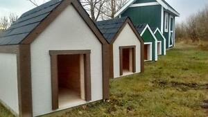 The Doghouse Your Dog Would Desire!