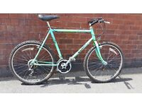 Recently Serviced Raleigh Lizard Mountain Bike - Great Condition