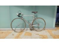 Alan Italian vintage bicycle Campagnolo Víctory like new vintage Alan bicycle from the fannini team
