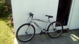 Silver TR1 Mountain bike