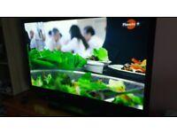Tv 50' Panasonic plasma,VGC.160£
